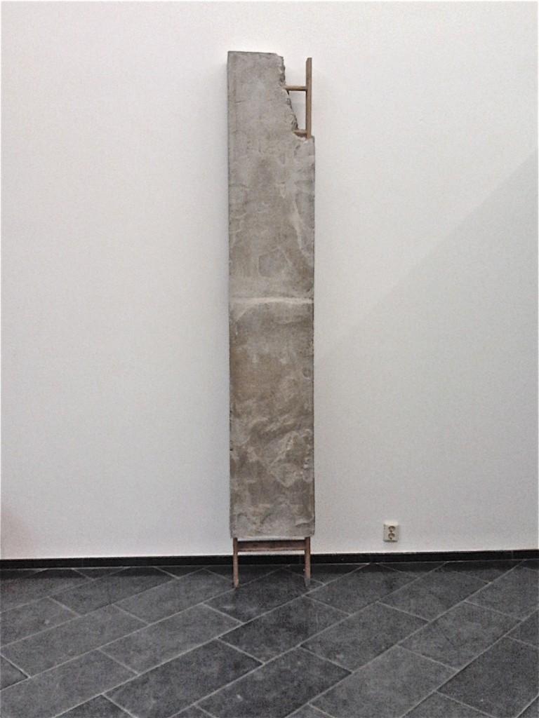 ladder Rudie van den Berg